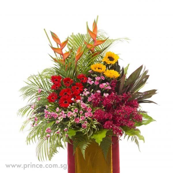 Blooms of Plenty