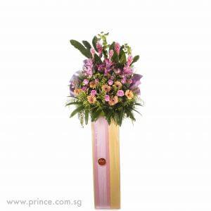 Congratulatory Flower - Colours of Harmony