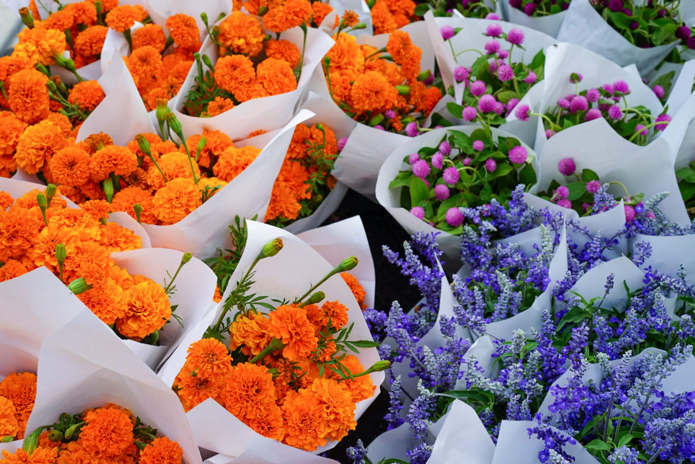 How to Choose a Grand Opening Flower Stand in Singapore